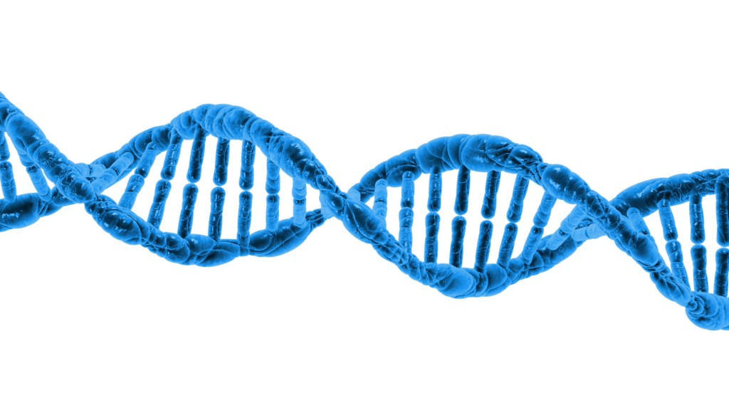 dna-1370603787LgY